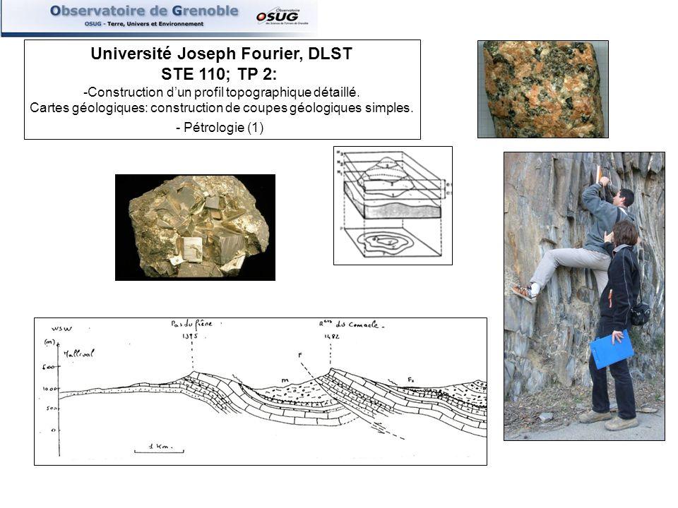 Université Joseph Fourier, DLST