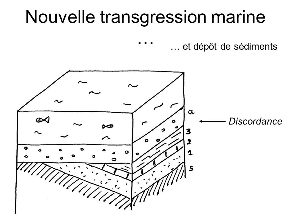 Nouvelle transgression marine …