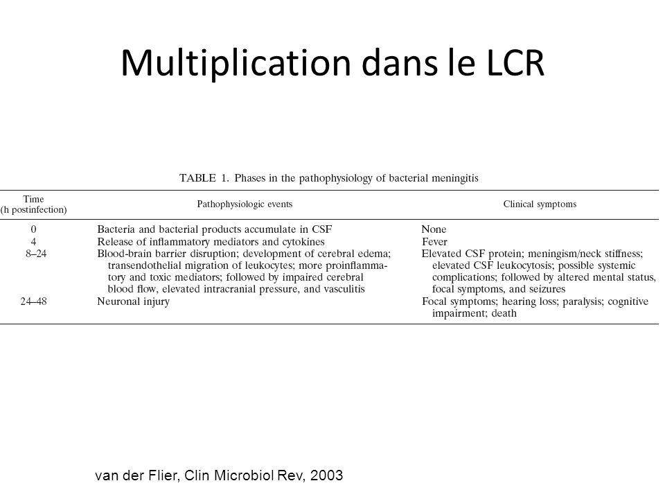 Multiplication dans le LCR