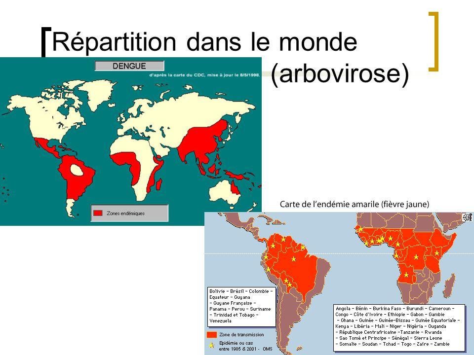 Répartition dans le monde (arbovirose)