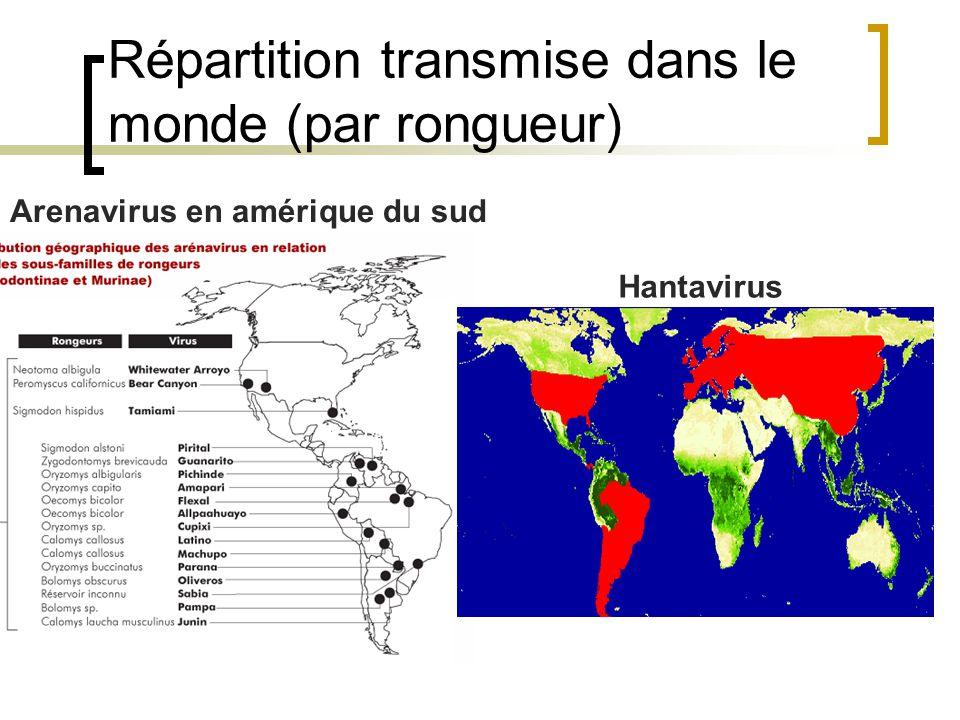 Répartition transmise dans le monde (par rongueur)