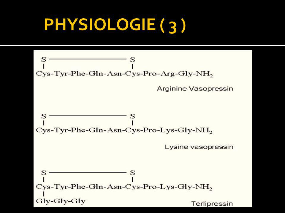 PHYSIOLOGIE ( 3 )