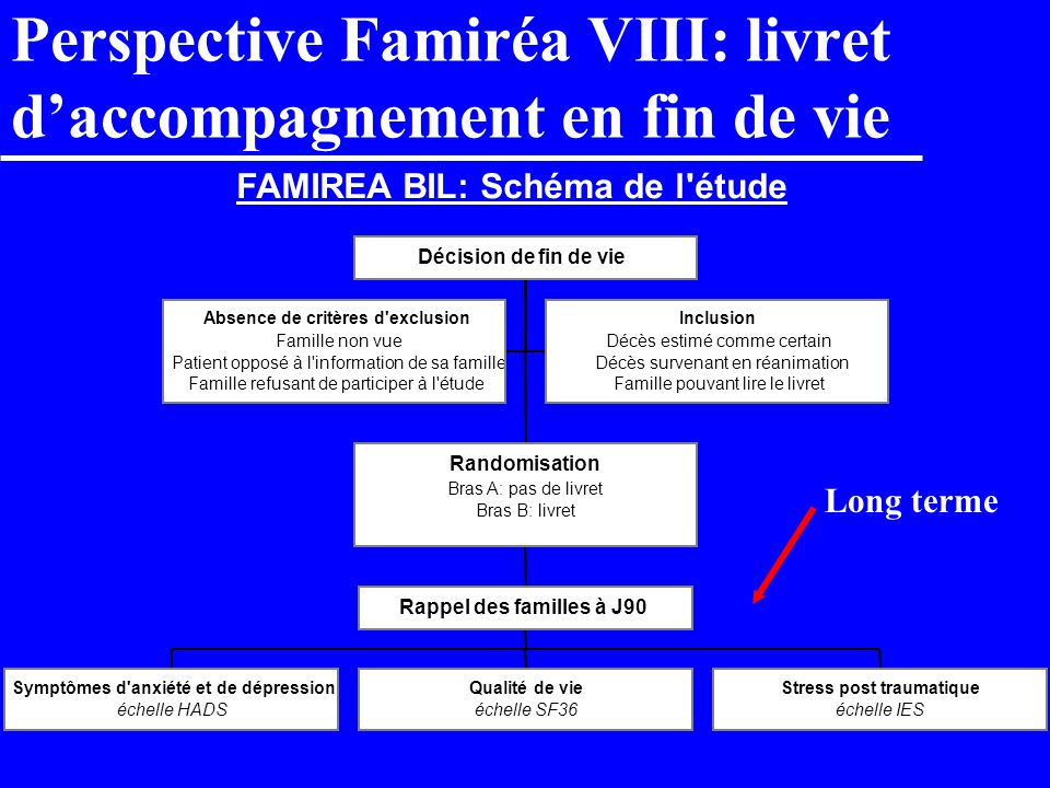 Perspective Famiréa VIII: livret d'accompagnement en fin de vie