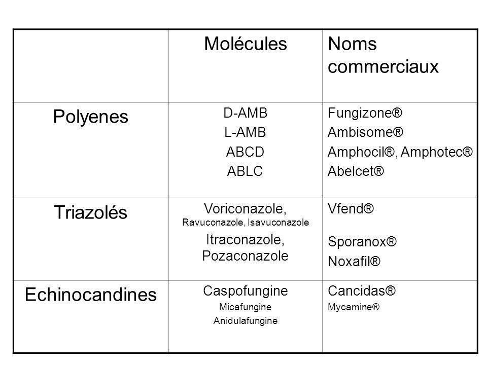 Molécules Noms commerciaux Polyenes Triazolés Echinocandines D-AMB