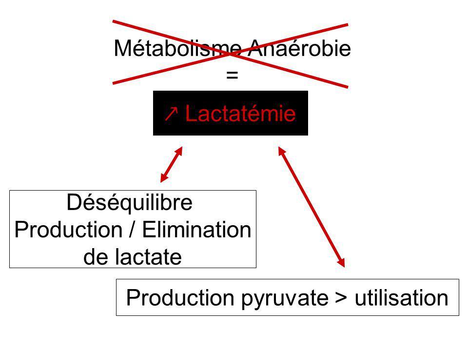 Métabolisme Anaérobie =
