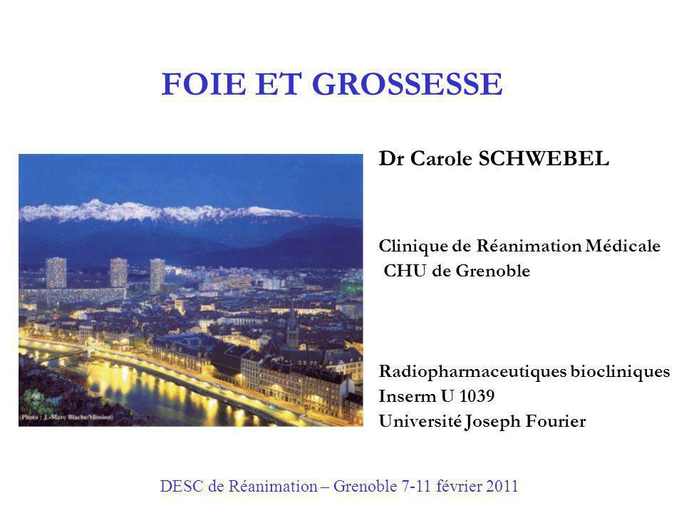 FOIE ET GROSSESSE Dr Carole SCHWEBEL Clinique de Réanimation Médicale