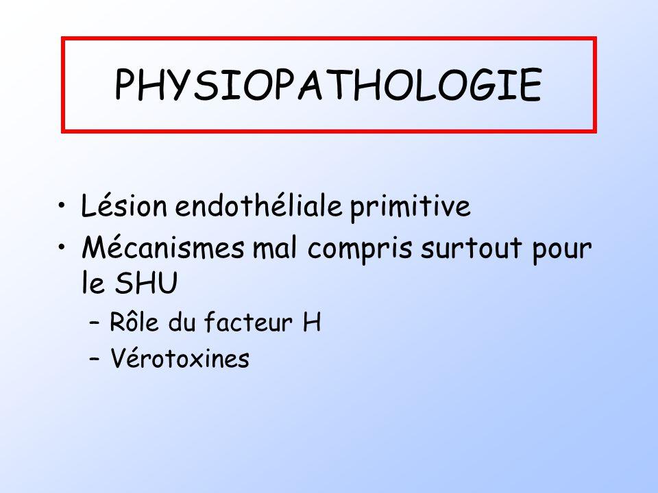 PHYSIOPATHOLOGIE Lésion endothéliale primitive