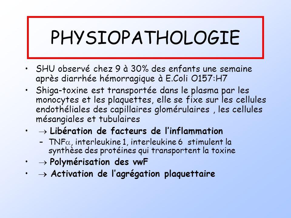 PHYSIOPATHOLOGIE SHU observé chez 9 à 30% des enfants une semaine après diarrhée hémorragique à E.Coli O157:H7.