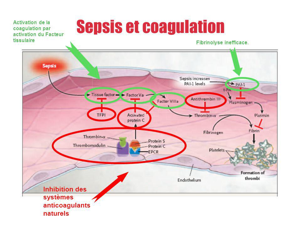 Sepsis et coagulation Inhibition des systèmes anticoagulants naturels