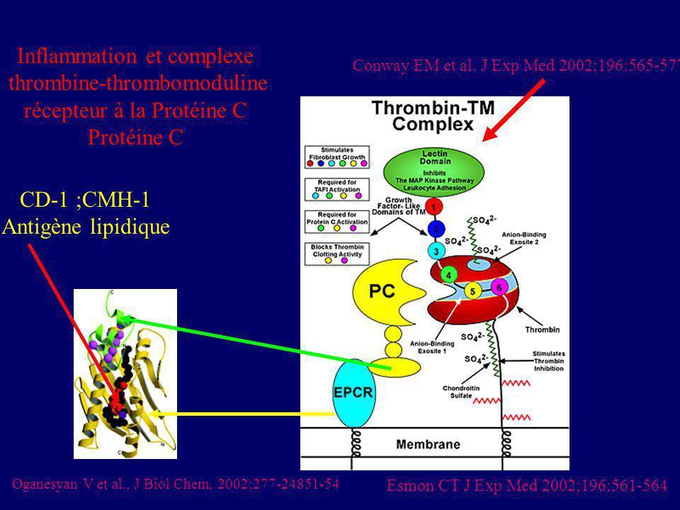 Inflammation et complexe thrombine-thrombomoduline