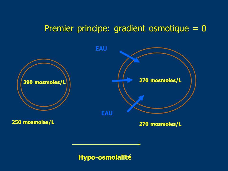 Premier principe: gradient osmotique = 0