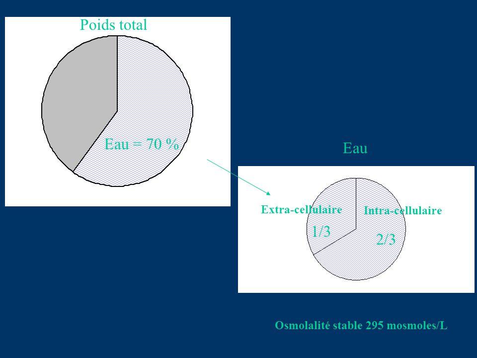 Poids total Eau = 70 % Eau 1/3 2/3 Extra-cellulaire Intra-cellulaire