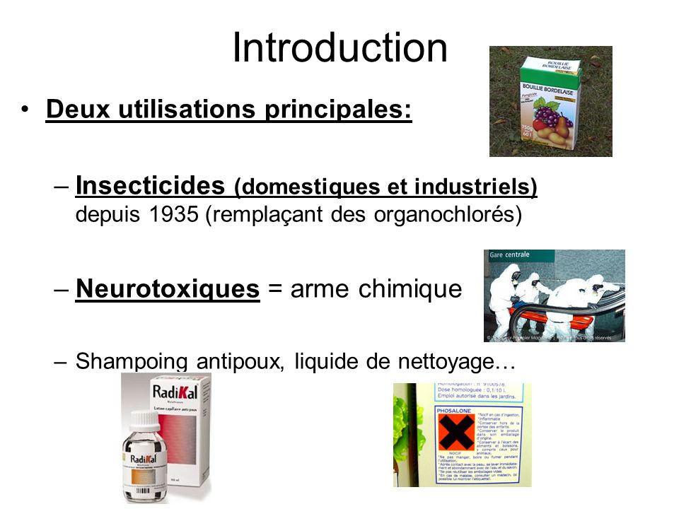 Introduction Deux utilisations principales: