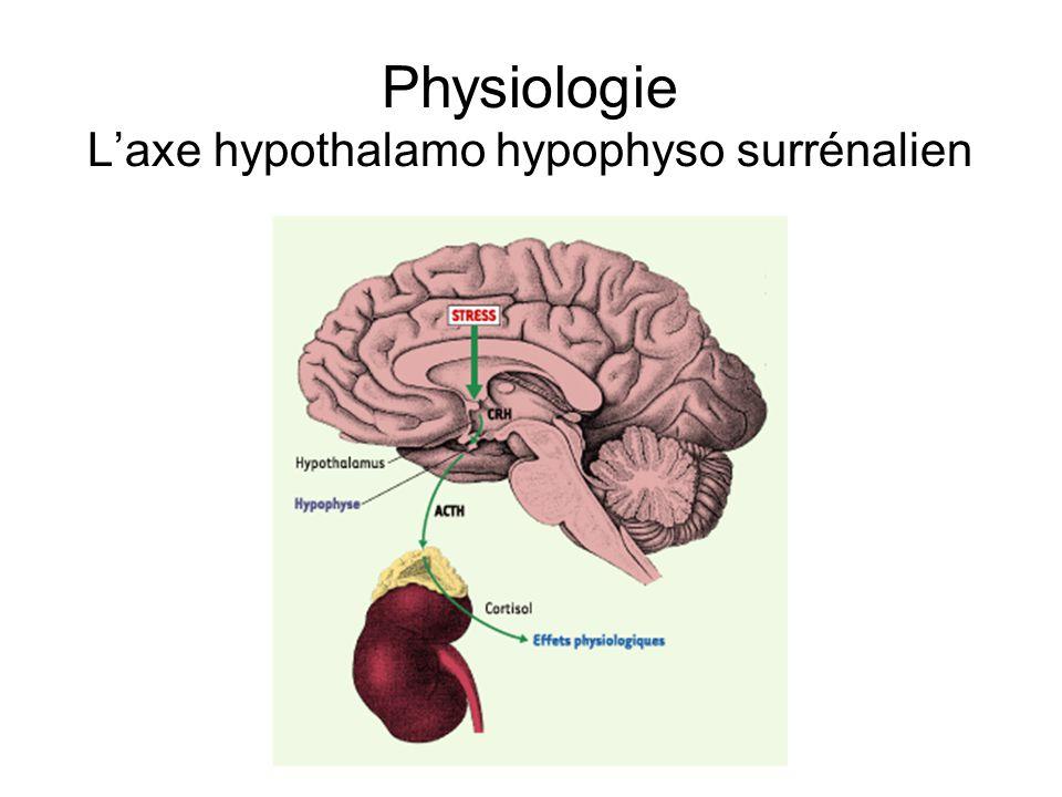 Physiologie L'axe hypothalamo hypophyso surrénalien