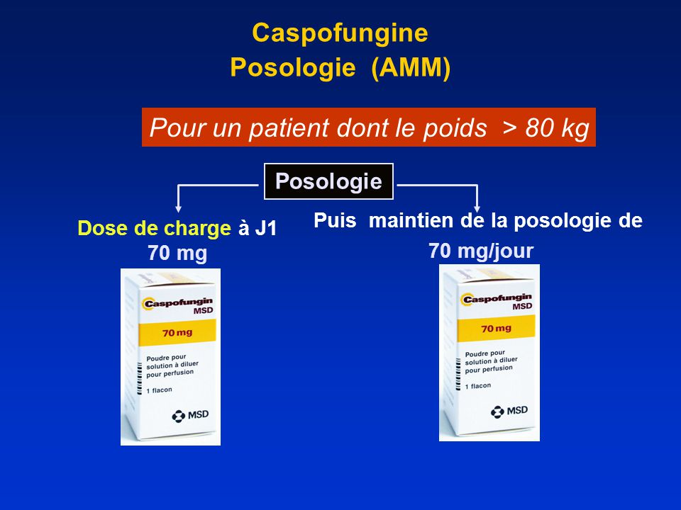 Caspofungine Posologie (AMM)
