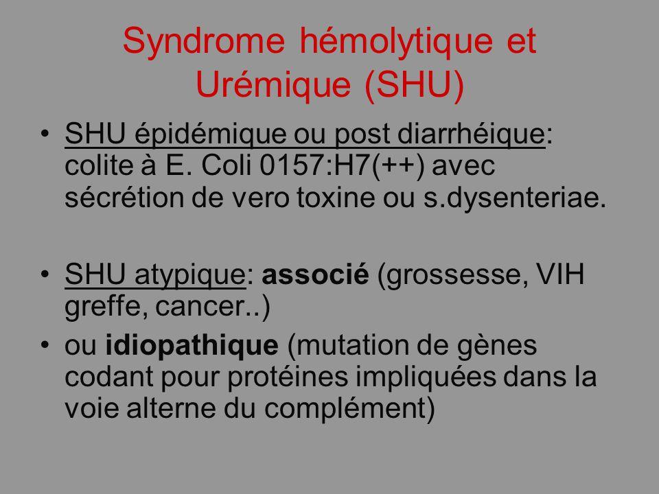 Syndrome hémolytique et Urémique (SHU)