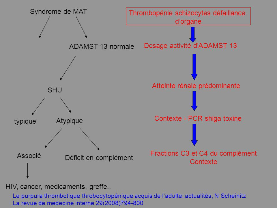 Thrombopénie schizocytes défaillance d'organe