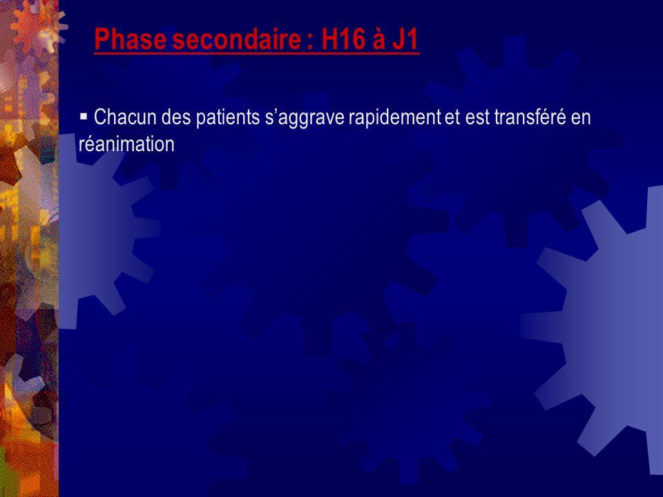 Phase secondaire : H16 à J1 Chacun des patients s'aggrave rapidement et est transféré en réanimation.