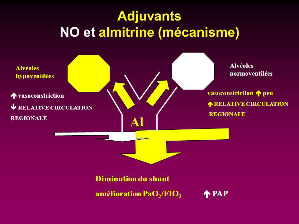 Adjuvants NO et almitrine (mécanisme)