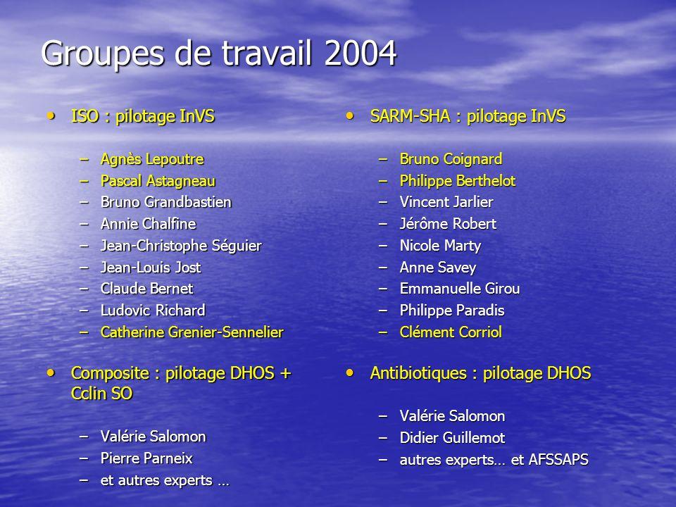 Groupes de travail 2004 ISO : pilotage InVS