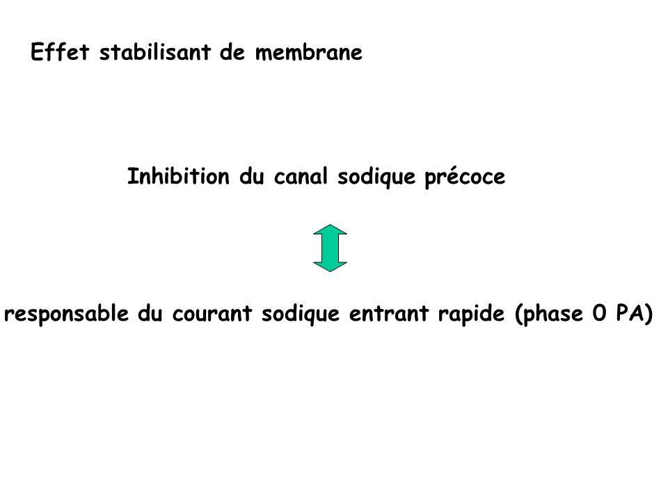 Effet stabilisant de membrane