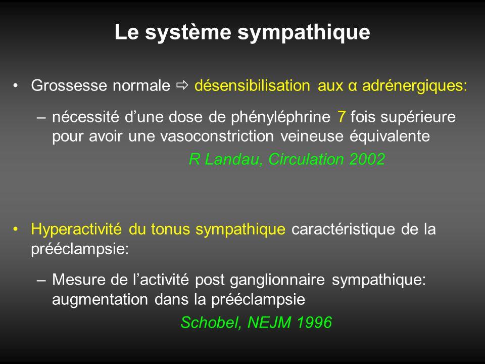 Le système sympathique