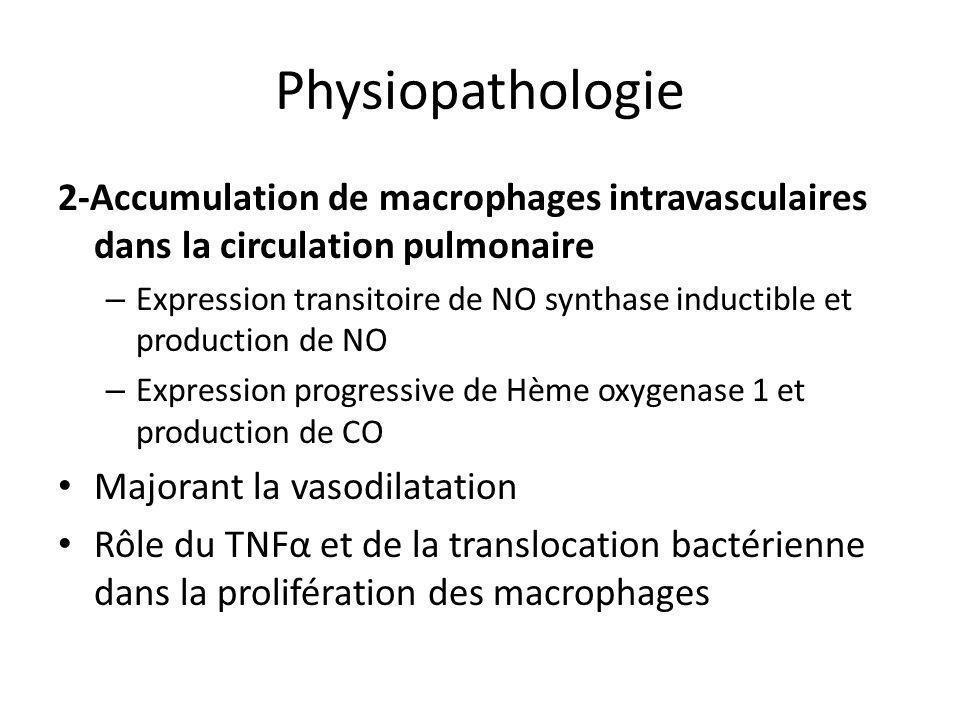 Physiopathologie 2-Accumulation de macrophages intravasculaires dans la circulation pulmonaire.