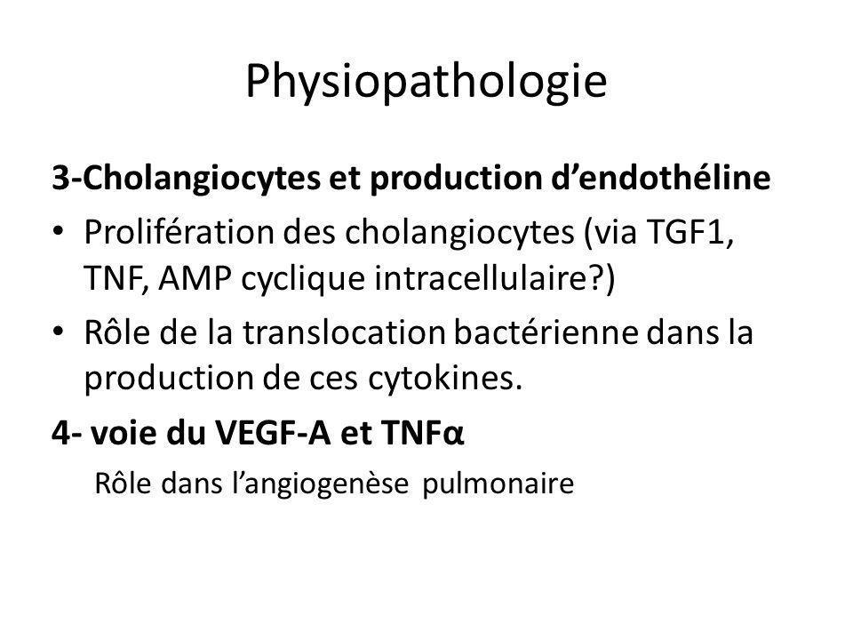 Physiopathologie 3-Cholangiocytes et production d'endothéline