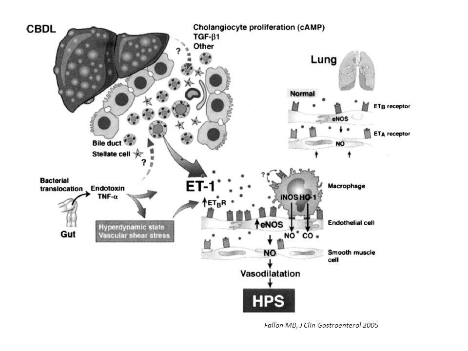 Fallon MB, J Clin Gastroenterol 2005