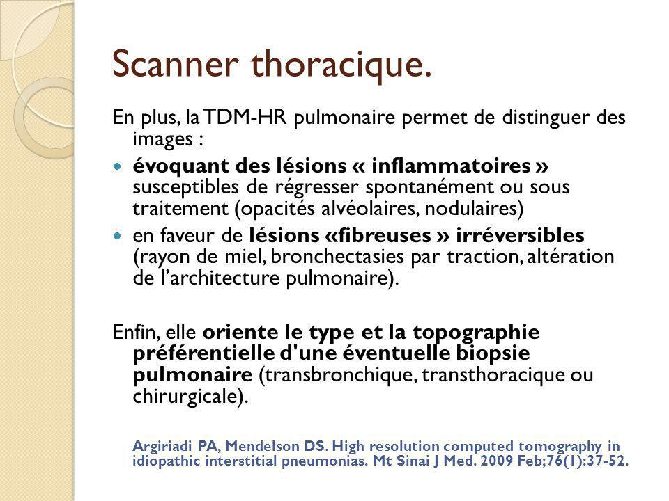 Scanner thoracique. En plus, la TDM-HR pulmonaire permet de distinguer des images :