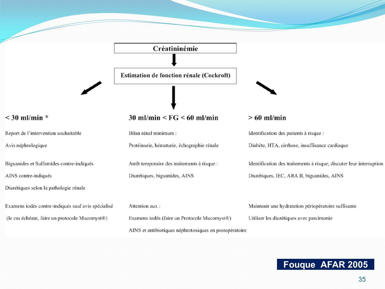 Fouque AFAR 2005