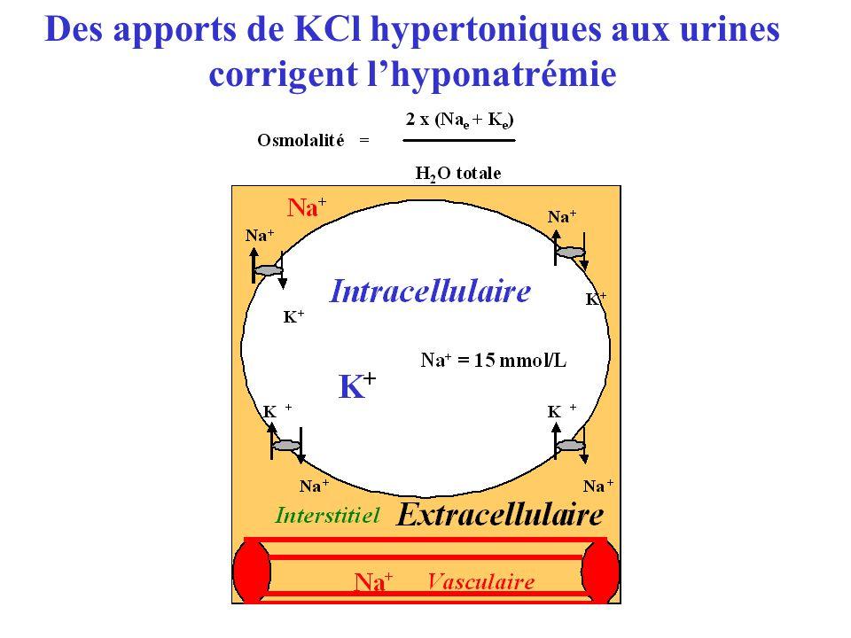 Des apports de KCl hypertoniques aux urines corrigent l'hyponatrémie
