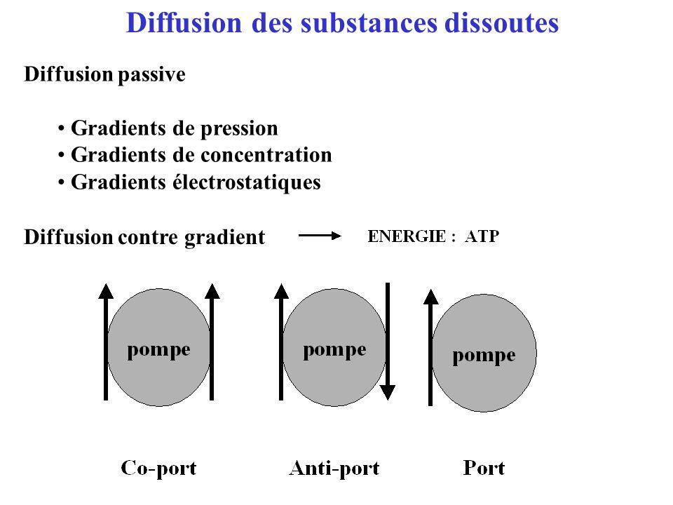 Diffusion des substances dissoutes