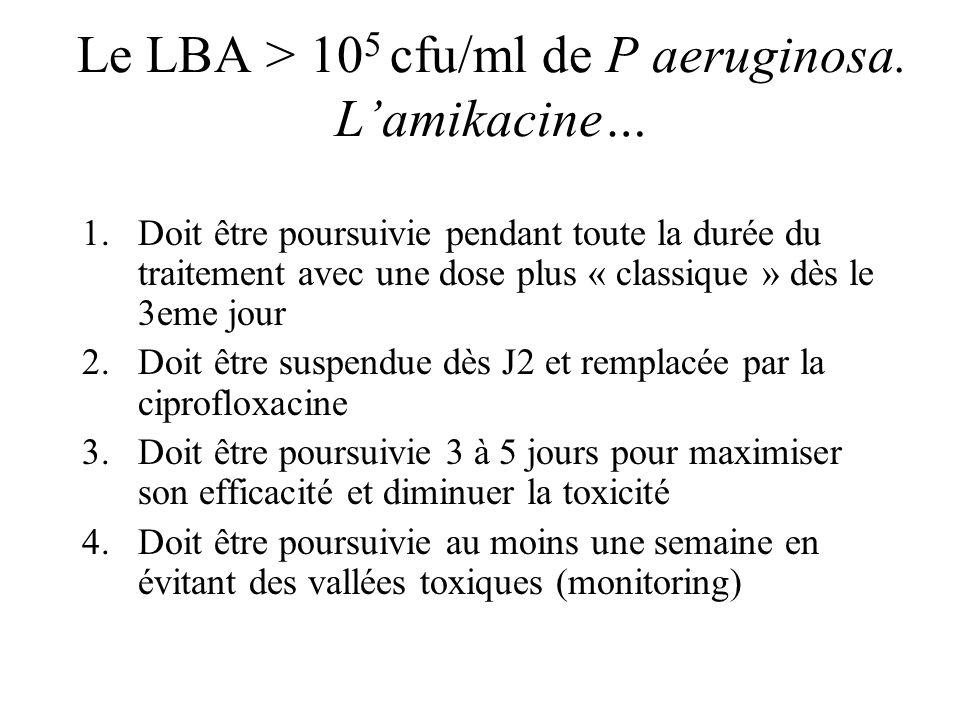 Le LBA > 105 cfu/ml de P aeruginosa. L'amikacine…
