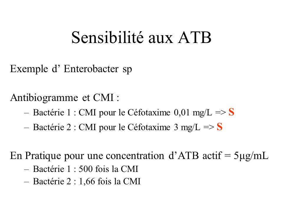 Sensibilité aux ATB Exemple d' Enterobacter sp Antibiogramme et CMI :