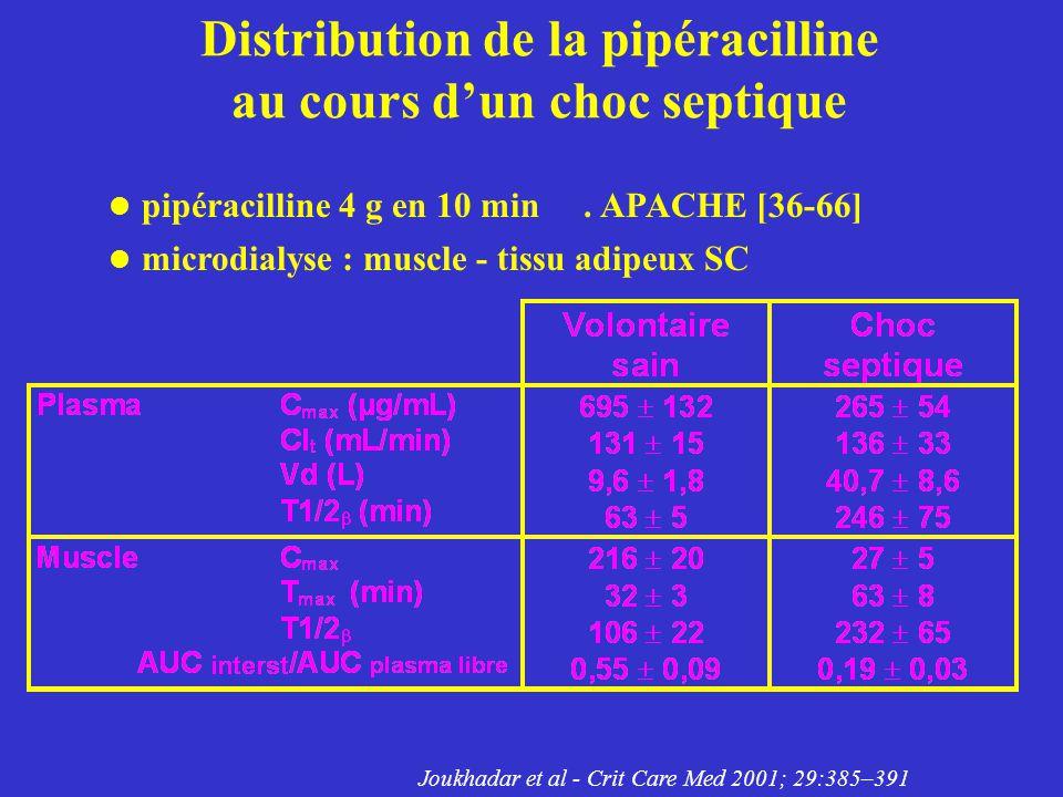 Distribution de la pipéracilline au cours d'un choc septique