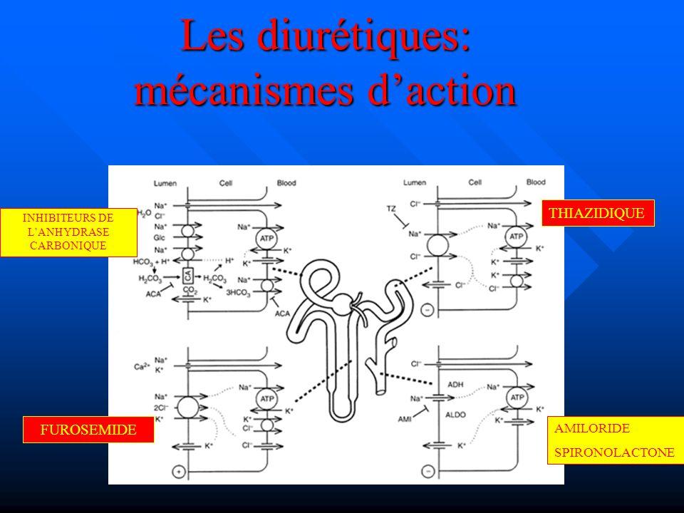 Les diurétiques: mécanismes d'action