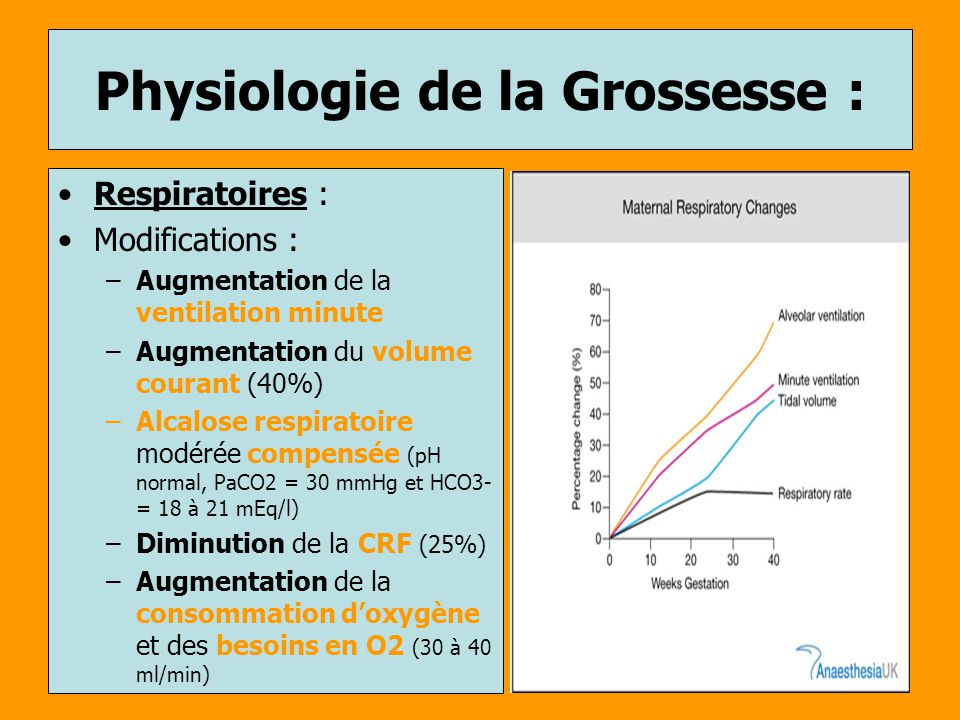 Physiologie de la Grossesse :