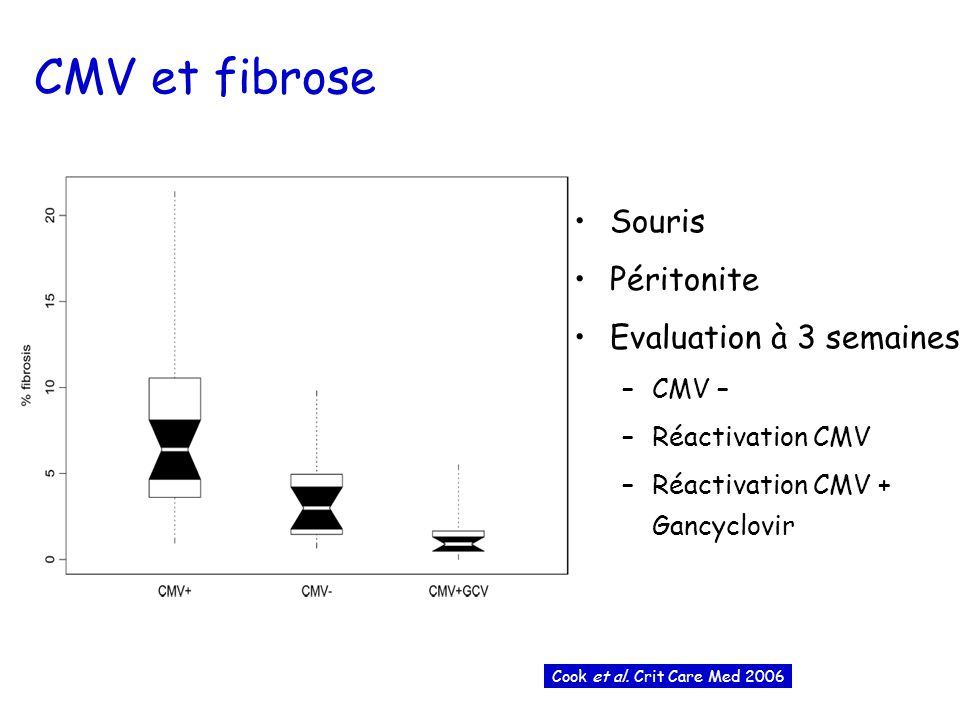 CMV et fibrose Souris Péritonite Evaluation à 3 semaines CMV –
