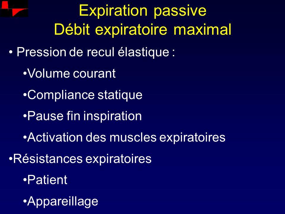 Expiration passive Débit expiratoire maximal