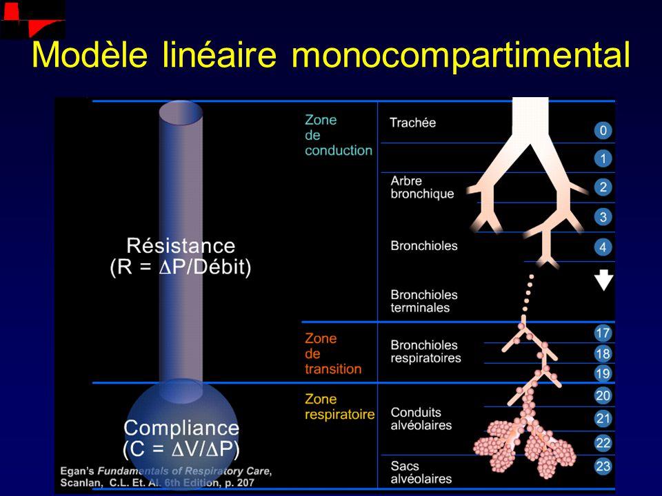 Modèle linéaire monocompartimental