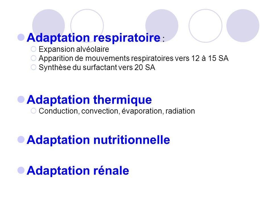 Adaptation respiratoire :