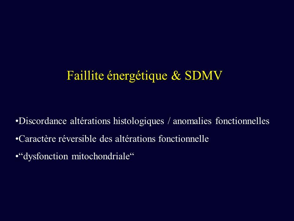 Faillite énergétique & SDMV