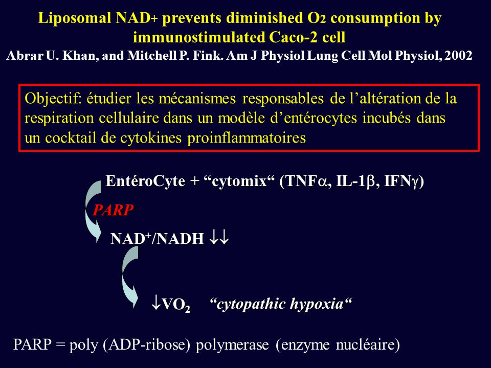 Liposomal NAD+ prevents diminished O2 consumption by immunostimulated Caco-2 cell Abrar U. Khan, and Mitchell P. Fink. Am J Physiol Lung Cell Mol Physiol, 2002
