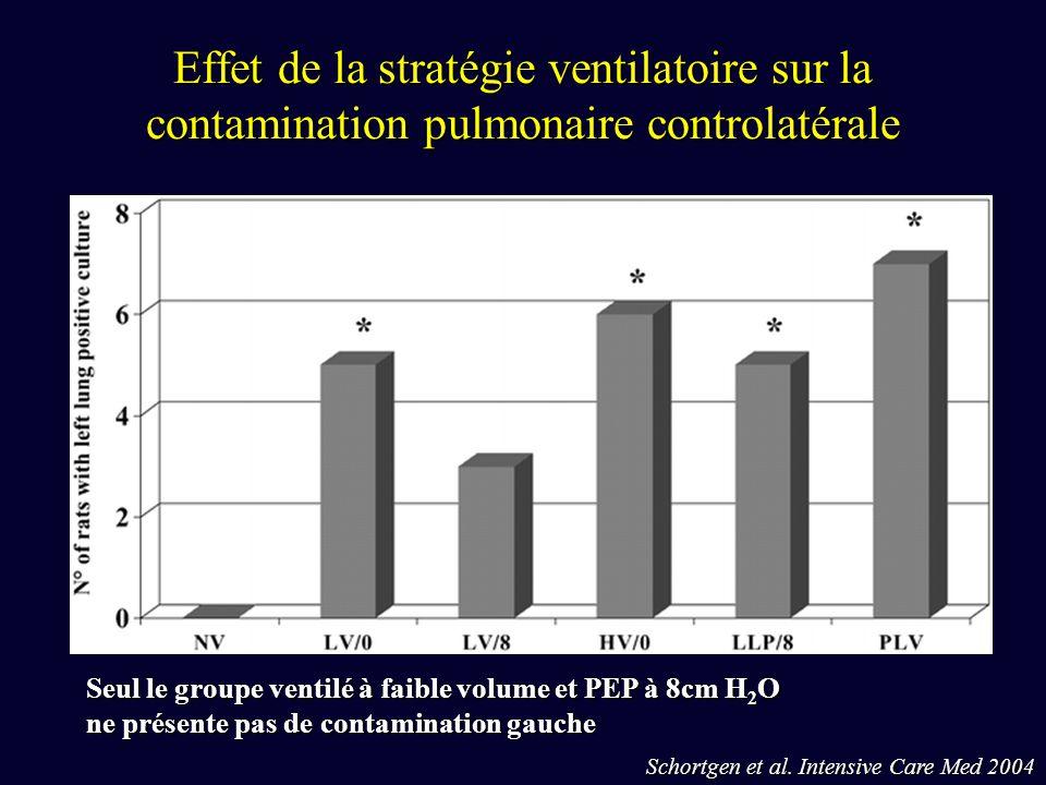 Effet de la stratégie ventilatoire sur la contamination pulmonaire controlatérale