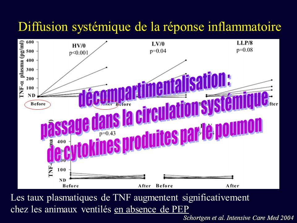 Diffusion systémique de la réponse inflammatoire