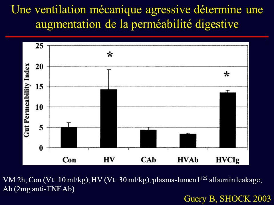 Une ventilation mécanique agressive détermine une augmentation de la perméabilité digestive