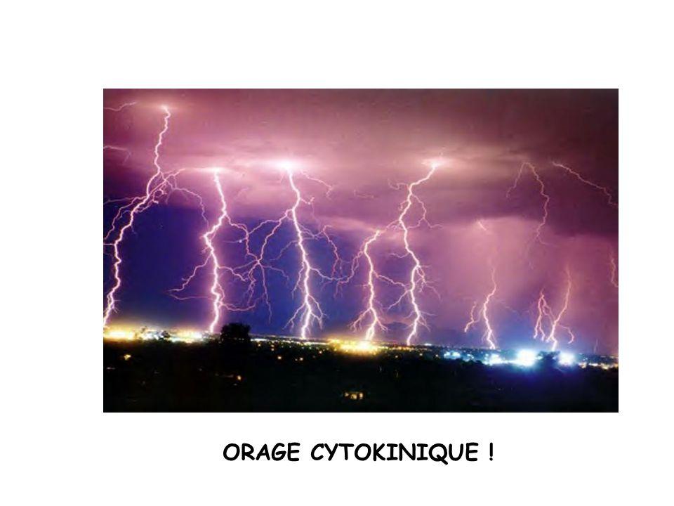 ORAGE CYTOKINIQUE !