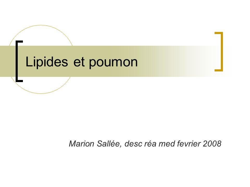 Marion Sallée, desc réa med fevrier 2008