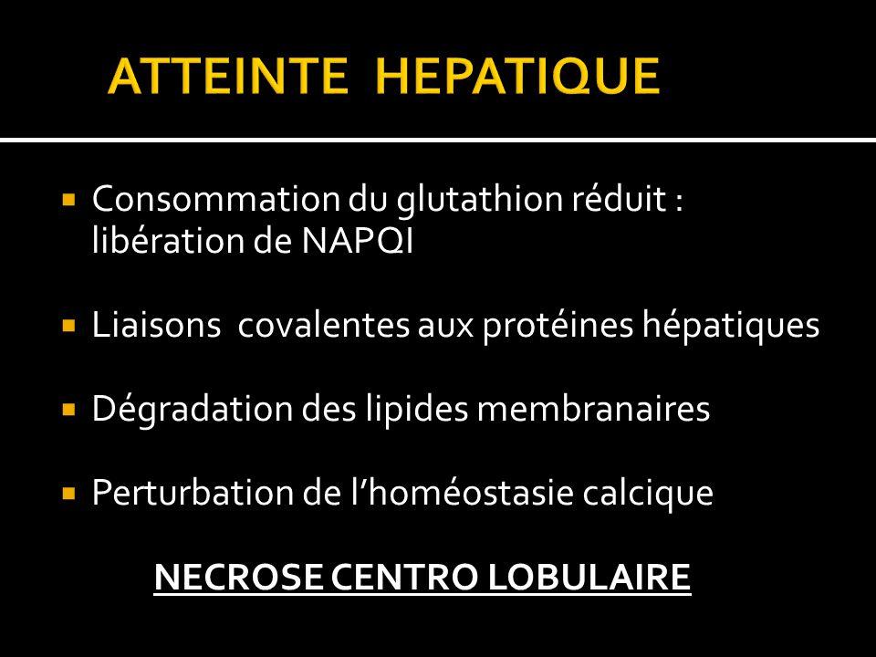 ATTEINTE HEPATIQUE Consommation du glutathion réduit : libération de NAPQI. Liaisons covalentes aux protéines hépatiques.